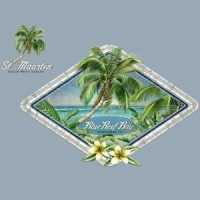 ZOT1195 PARADISE Palm